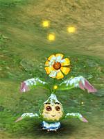 Snowy Mystic Flower