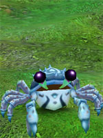 Sentry Crab