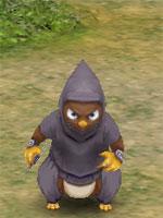 Ninja Mole