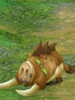 Tusk Battle Boar