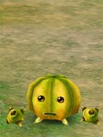 Gigantic Melon