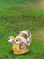 Steel-shell Snail