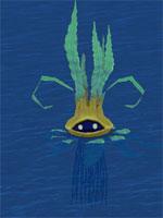 Wild Seaweed