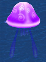 Tornado Sea Jelly