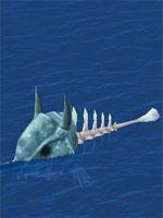 Scavenger Fish Bone