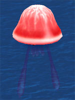 Berserk Electric Sea Jelly
